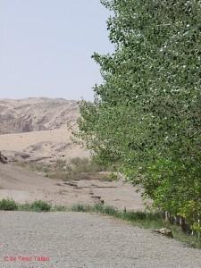 Wüste bei den Mogao-Grotten bei Dunhuang